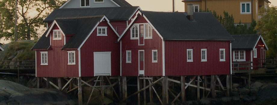 Lune de miel de rêve en Norvège !