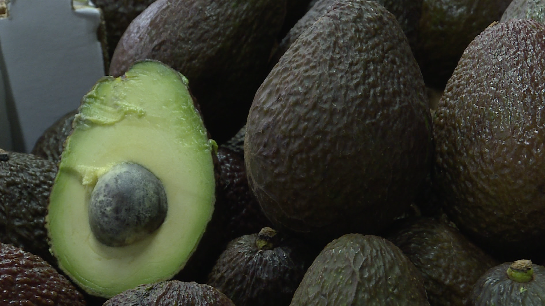 L'avocat, nouveau fruit-star