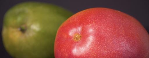 Bons plats de l'été révélation sur vos aliments préférés : Mangue