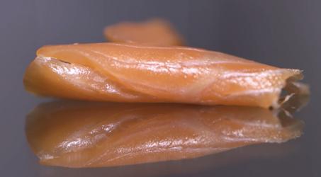 La truite: le «nouveau saumon» à petits prix ?