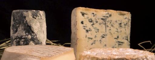 Fromages AOP : le terroir caisse ?